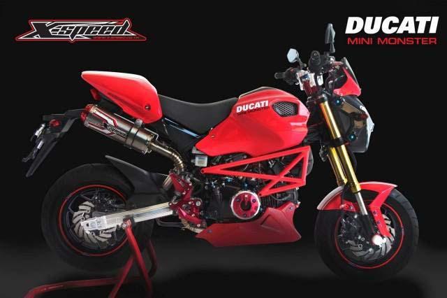 Mini Bike Ducati : Honda grom ducati monster gromcati asphalt rubber