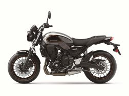 2022-Kawasaki-Z650RS-46
