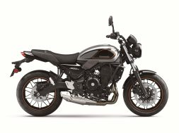 2022-Kawasaki-Z650RS-48