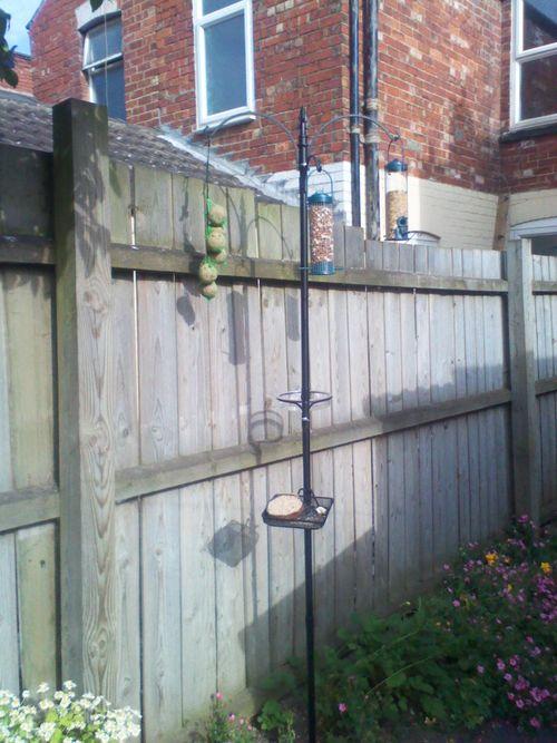 Metal bird feeder