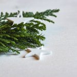 The Family Patch Midwinter Solstice Activities
