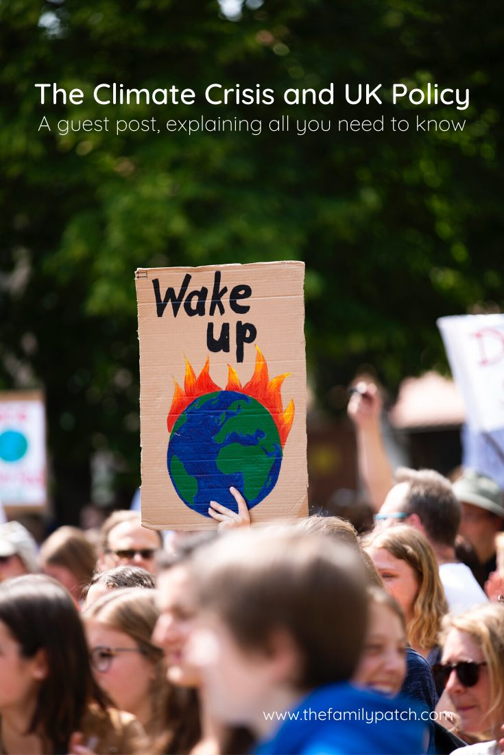 "climate change march, with someone holding up a sign saying ""wake up"" with a painting of planet earth on fire"