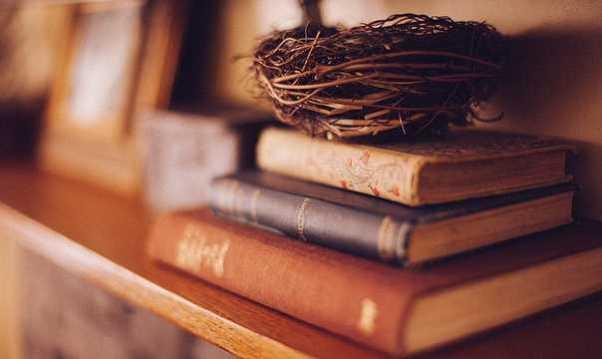 Generi letterari: puntare su quelli che vendono oppure no?