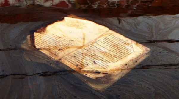 La letteratura è morta oppure è cambiata radicalmente