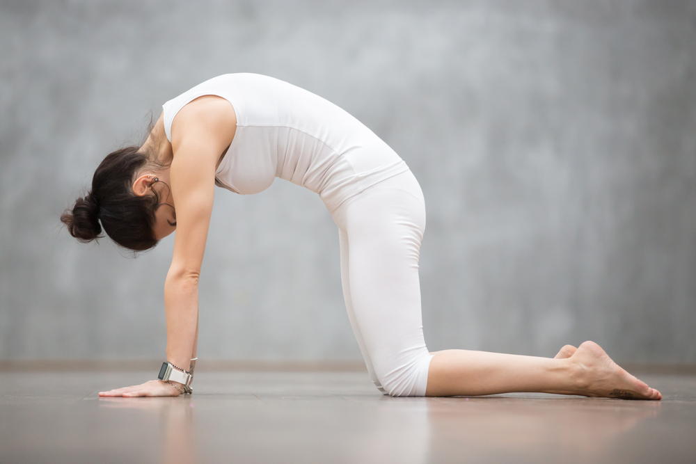 Healthy Living: Why You Should Start a Daily Yoga Practice
