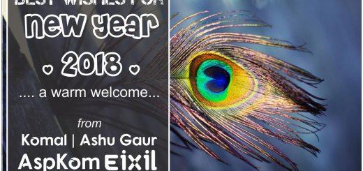2018 New Year Wishes, Komal, Ashu Gaur