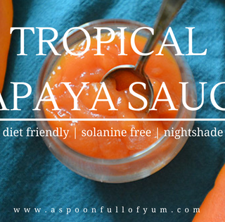 Tropical Papaya Sauce - A Zesty Tomato-Free Sauce Alternative! LEAP diet friendly | Solanine and Nightshade Free! | www.aspoonfullofyum.com