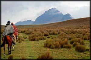 Horseback Riding Cotopaxi
