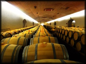 maipo wine barrels