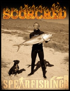 scorched spearfishing article cover photo