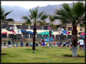 Iquique yoga in park photo