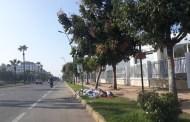 شوارع وأحياء الدار البيضاء تغرق في الأزبال