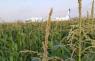 سرب من الطيور يتسبب في هبوط اضطراري لطائرة تقل على مثنها 226