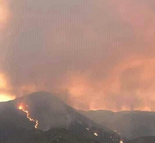 حريق مهول بغابة جبل عين اسردون ببني ملال