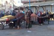 عين حرودة...باعة جائلين يتحولون الى قطاع طرق .. و السلطات تتفرج !!! - فيديو
