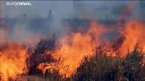 الحرائق تتجدد وتلتهم مساحات شاسعة في غابات الأمازون