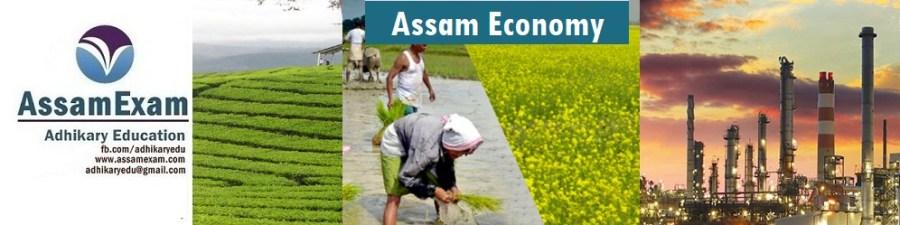 Assam Economy - Assamexam