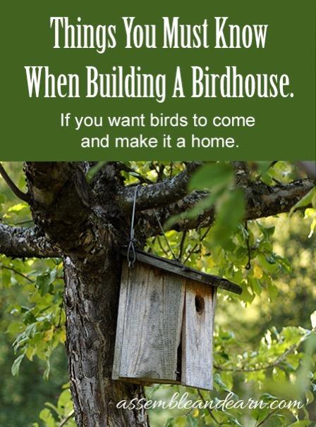 Bird feeder 371
