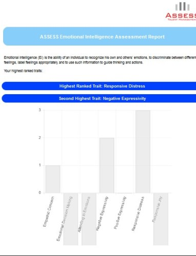 ASSESS Emotional Intelligence Report