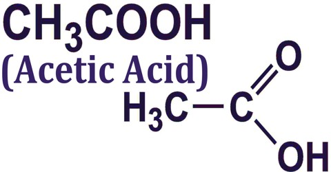 Acetic Acid Assignment Point
