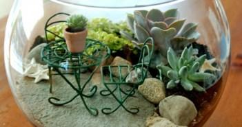 terçariam com plantas mini cadeira e mesa