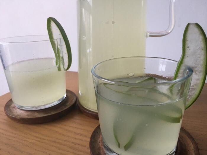 água suco Aloe Vera
