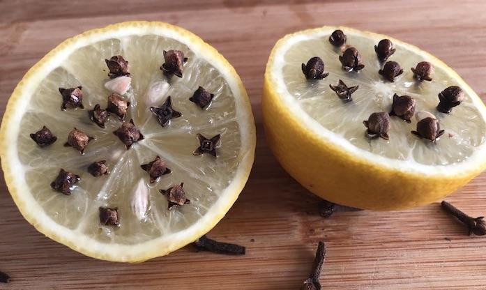 cravos fincados no limão