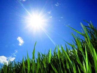 Assisi aderisce allo sciopero per il clima, sensibilizzare i ragazzi