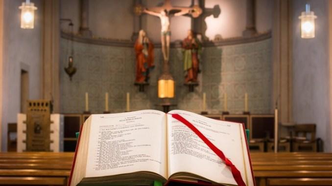 """Da Assisi un messaggio per la custodia del creato Testi e musiche per illustrare il volume: """"Laudato Si'. Dal Cantico di frate Sole all'enciclica di papa Francesco"""""""