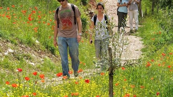 Picnic al Bosco, evviva è Pasquetta