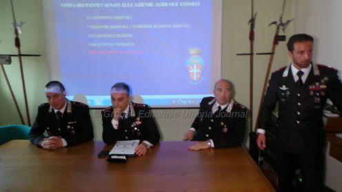 carabinieri-conferenza-estrorsione (3)