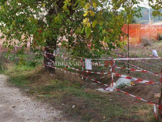 Morte Domenico Pelagatti, funerali saranno mercoledì 26 ottobre a Bastia
