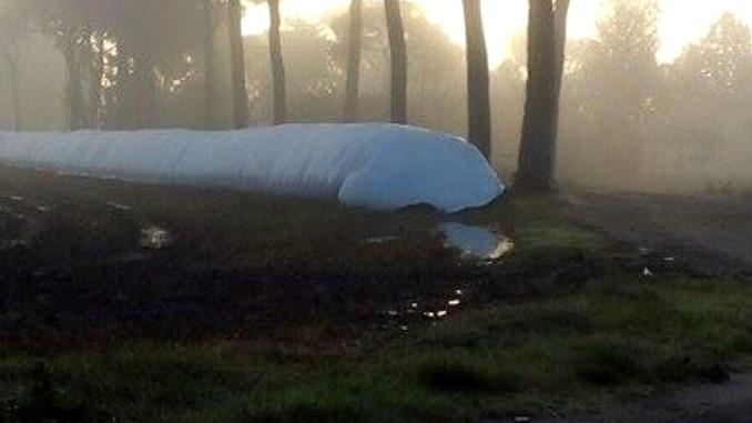 Inquinamento da digestato a Petrignano, M5s interpella il comune