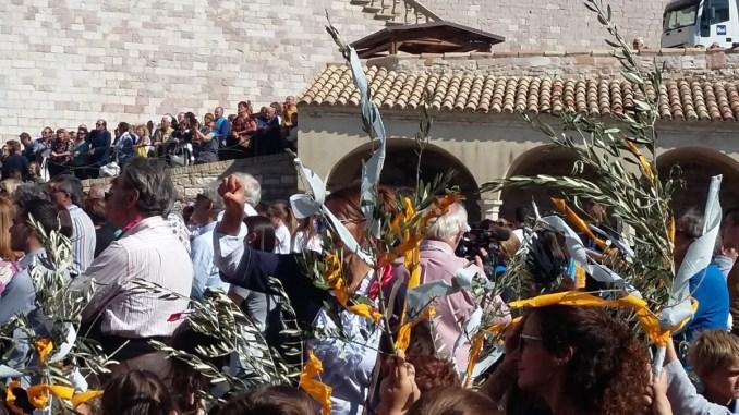 Assessore Pettirossi, grazie agli studenti e studentesse alla festa di San Francesco