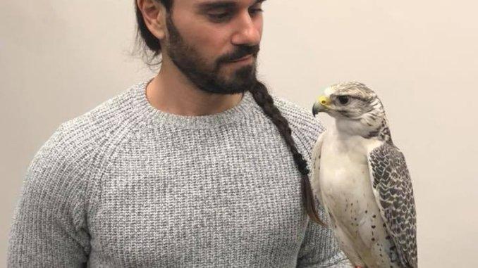 Spettacolo Falcong lo spettacolo della falconeria, nella memoria dell'uomo