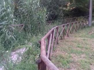 Erbacce alte a San Vittorino, percorso verde rischia di scomparire