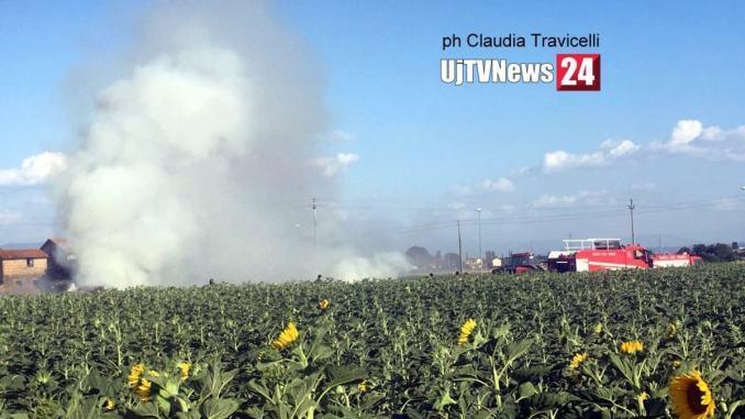 Incendio campo di girasoli lungo la strada per Petrignano