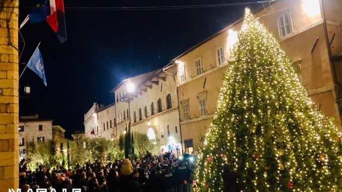 Acceso l'albero di Natale di piazza del Comune ad Assisi, è l'Ecoalbero