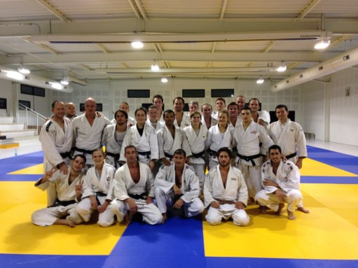 Judo - Adultes