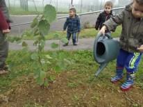 cecl-automne-2014-plantation-noisetier0018