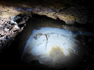 ob_d34daa_grottes-d-aze-71-saone-et-loire-022