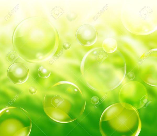 6975382-Un-fond-vert-de-r-sum-naturel-avec-des-plantes ...