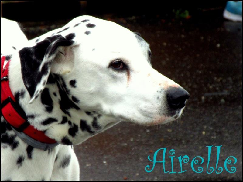 AIrelle2805
