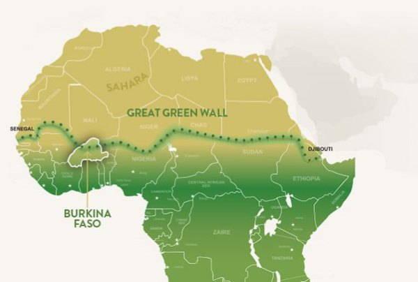 La grande muraglia verde per salvare l'Africa