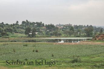 soweto1_016