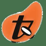 Logo Ticonzero