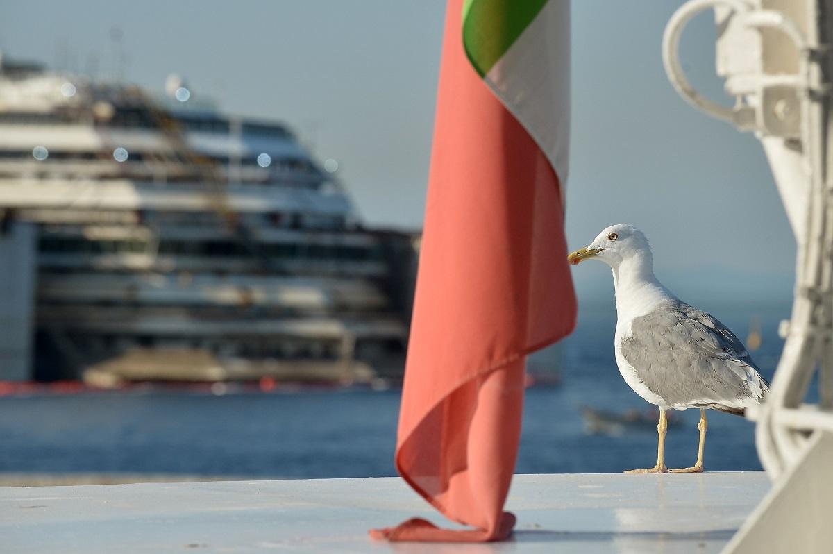 عائدات القطاع السياحي العربي في 2013 بـلغت 167 مليار دولار