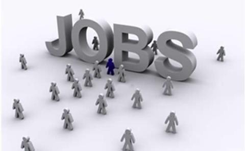 العالم يواجه أزمة وظائف معممة