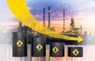 دول الخليج تدرس إجراءات للتعامل مع تراجع أسعار النفط
