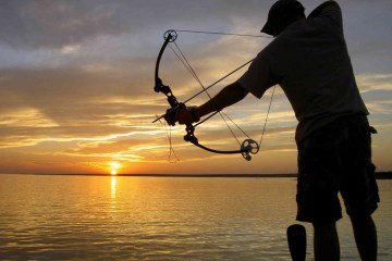 best-bowfishing-bow-reviews